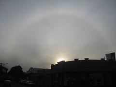 Solar Halo (Wyrmworld) Tags: halo australia perth westernaustralia nedlands solarhalo