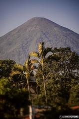 Vista de Atitlán (_Alexander7) Tags: volcano volcan volcanes ixcanul coloso colossus accidente volcanoes arboles san lucas tolimán toliman atitlán atitlan volcanoatitlán guatemala guatemalatrasmilente guateamala guate guatemalacity guatemalteco guatemaya guatemala502 guatetrasmilente guategram guatemalteca guate360 guatelinda quepeladoguate sololá solola nacional visitguatemala alexander cividanis nikon