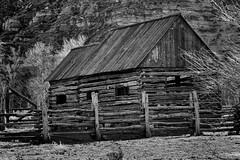 Pioneer Barn (arbyreed) Tags: arbyreed blackndwhite bw monochrome old abandoned pioneer graftonghosttown barn pioneerbarn logbarn washingtoncountyutah fence explore