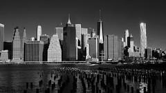 Lower Manhattan (-SOLO--) Tags: skyline nyc lowermanhattan 7dwf blackandwhite architecture bw crazytuesdaytheme