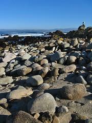 Pacific Grove, California (Jasperdo) Tags: pacificgrove california roadtrip pacificgrovemarinegardens montereypeninsula pacificocean landscape scenery rocks
