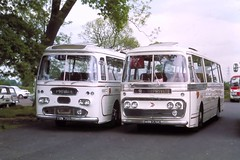 300575 Chester Zoo Ribble TRN755 and ARN776C (The KDH archive) Tags: bus chester 1975 leyland ribble plaxton