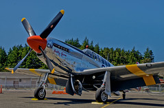 North American P-51C Mustang -- DSC7870 (Lance & Cromwell back from a Road Trip) Tags: oregon airport aircraft sony wwii worldwarii mustang p51 northbend northamerican a55 wingsoffreedom p51c cooscounty sonyalpha sal16105