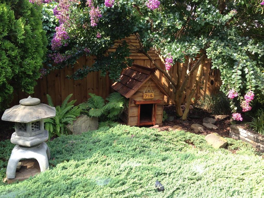 the world u0027s best photos by my diy garden flickr hive mind
