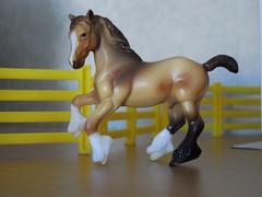 Breyer stable mates (ItalianToys) Tags: horses horse toy toys stalla stable cavalli cavallo giocattoli breyer fattoria giocattolo