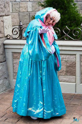 Fairy Godmother at Cinderella's Castle in Disney World