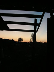 new roof framing at sunset (henna lion) Tags: autumn sunset fall living diy ic community outdoor space joan covered trust land homestead framing sustainable fic primitive intentional shagbark 2013 kovatch joankovatch