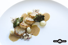 Panfried Coquilles, crumbed oyster, puree of parsleycarrot, crumble of hazelnut and autumn sauce (Photography Bart Tanghe) Tags: food fish vegetables digital nikon dish diner dslr scallop product windowlight coquilles d800e