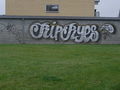 RIP RYES (All.in.for.Fastfood) Tags: graffiti peace rip rest apes ryes in bombsquad bsq hundige