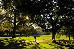 Early morning (Arutemu) Tags: city morning light usa sunlight nature canon us 太陽 風景 光 アメリカ 街 24105 町 美国 朝 米国 eos5d 都市 都会 光景