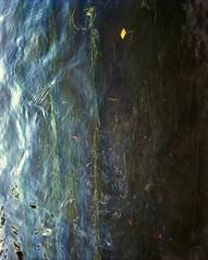 - (Andrs Medina) Tags: film rio mediumformat 6x7 andresmedina