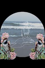 Mermaid (LutxOspina Manzano) Tags: ocean flowers sea flores birds mar pajaros mermaid sirena oceano