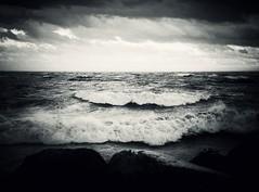 Drowning (Marie Granelli) Tags: autumn water skåne sweden explore söderslätt d3000