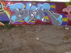 Bler (soulroach) Tags: nyc ny graffiti queens bler
