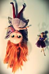 Fairy flying school