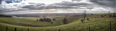 View from trundle