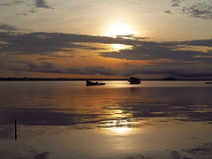 Rio Negro (A. Couto) Tags: travel brazil nature sunrise amazon rionegro