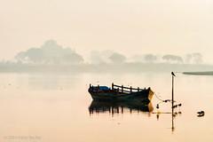 Yamuna (Irene Becker) Tags: morning india nature birds fog rural river landscape countryside boat earlymorning rajasthan imagesofindia northindia vrindavan uttarpradesh jamuna incredibleindia indianimages irenebecker irenebeckereu