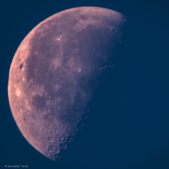 Daytime Waning Gibbous Moon (DonMiller_ToGo) Tags: moon telephoto astrophotography astronomy 500mm lunar 2x waninggibbous daytimemoon