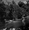 Against all odds (Giovanni Savino Photography) Tags: water river dominican dominicanrepublic dive tropics expiredfilm coffeeprocessing magneticart kodakeppfilm ©giovannisavino