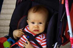 henry looking concerned (bradleygee) Tags: boy face texas stripes son henry concerned lookingat inastroller southpadreislandbirdingandnaturecenter