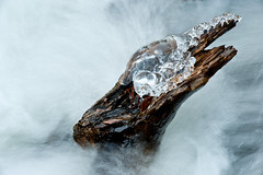 Ice-crowned snag (RobM333) Tags: winter abstract cold ice nature water river frozen whitewater rapids abstractnature icepatterns