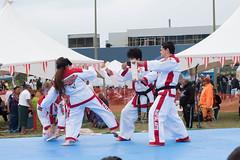 DC0_1257 (Eisbier) Tags: sport alaska training demo centennial do martial arts martialarts taekwondo celebration anchorage tae tkd kwon champ champmartialarts