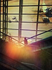 Shanghai airport series (Nick Kenrick.) Tags: shanghai shanghaiairport airport silhouette modernarchitecture architecture china transit candid pudong modernchina hipstamatic urban paulandreu shanghaipudonginternationalairport