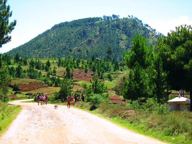 Madagascar1 - 47