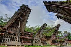 Rumah Adat Tongkonan | Kete Kesu, Tana Toraja