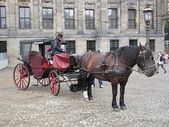 Amsterdam paardenkoets (Arthur-A) Tags: netherlands amsterdam carriage nederland horsecarriage koets karos paardenkoets