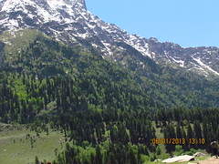 Beauty of Kashmir Valley (Sudip Majumder2012) Tags: kashmirindia aparadiseonearth