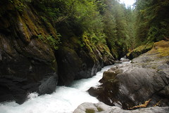 Quinault Gorge (riversandcreeks) Tags: kayaking nationalparkservice quinaultriver oiympicnationalpark wildandsceniceligible