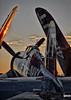 IMG_0085_HDR_1.jpg (lambertpix) Tags: corsair eaa oshkosh airventure makeawish f4u kaiden