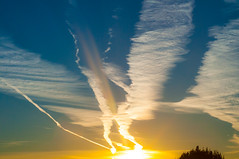 Sunrise Skid Marks (mendhak) Tags: blue trees tree birds yellow clouds sunrise skies streak trails chem vast expanse