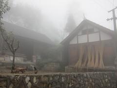 Suoga is misty (MFinChina) Tags: china house misty rural village foggy guizhou miao liuzhi suoga