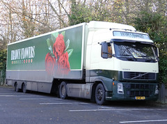 Eradus Flowers Volvo FH12 BP-VX-74 (PFB Trucking Photography) Tags: bridge flowers flower netherlands truck volvo lorry hull carpark humber fh12 eradus bpvx74