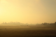 IMG_8969a (Josette Veltman) Tags: ijssel zonsopkomst engelsewerk uitterwaarden