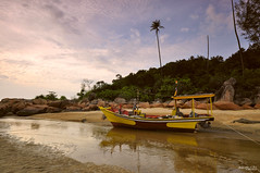  The yellow boat Terengganu  (Zawawi Isa) Tags: sea tree beach nature yellow landscape boat fishing village coconut malaysia getty longboat terengganu gettyimages gettyimage