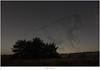 Ursa major (5D317387) (nandOOnline) Tags: nederland natuur ursamajor hemel heide landschap bigdipper strabrechtseheide ster mierlo grotebeer sterrenbeeld nbrabant sterrenhemel steelpannetje firmamentumsobiescianumsiveuranographia sterrenatlas