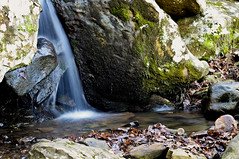 (PhotosByTarah) Tags: winter mountain fall nature water beautiful forest 50mm nikon long exposure pretty jean arkansas petit d7000 tmcwilliams