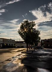DSC01150 (tonywoodphoto) Tags: street light landscape mood streetphotography documentary journalistic streetphotographer timeofday tonywood anthonywood