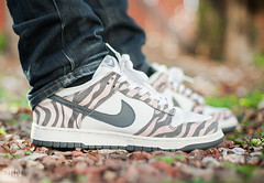 nike air max moto - The World\u0026#39;s Best Photos of daktari - Flickr Hive Mind