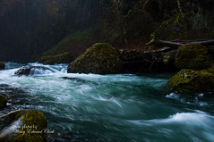 Abiqua Falls VI (Photos by Wesley Edward Clark) Tags: oregon whitewater silverton molalla scottsmills abiquacreek abiquafalls