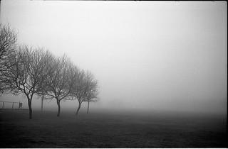 Niebla en Riaza