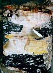 Maske, Abriss (web.werkraum) Tags: street urban berlin germany deutschland europa expression ks association abriss 2014 decollage kontraste berlinpankow wegzeichen vinetastr dasdasein bildfindung berlinerknstlerin tagesnotiz webwerkraum karinsakrowski