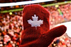 Olympic Pride (suesthegrl) Tags: canada hockey vancouver patriotic canadian olympics hudsonsbay 2010 canadianpride nationalpride redmittens