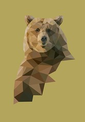 grizzly (Joanna Kowalska) Tags: bear nature illustration triangle grizzly