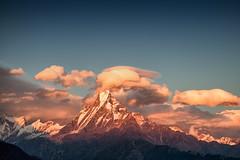 Sunset on The Himalayas, Nepal (CamelKW) Tags: nepal sunset trekking annapurna annapurnatrek poonhilltrek