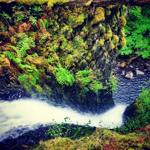#Hiking over and down to a lesser known view of the top of Ponytail Falls